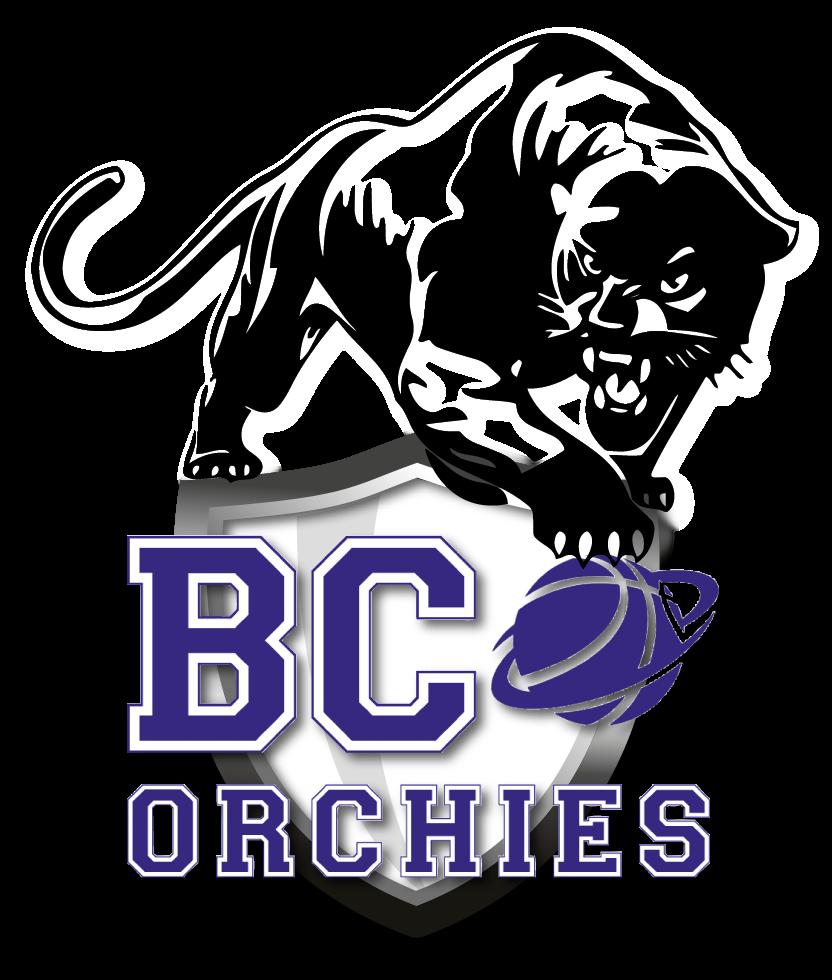N1 besac-orchies
